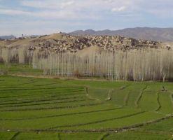 روستای نامق