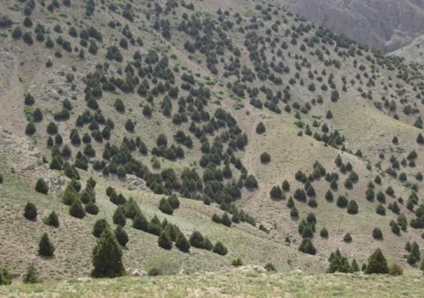 منطقه شکار ممنوع کلیلاق