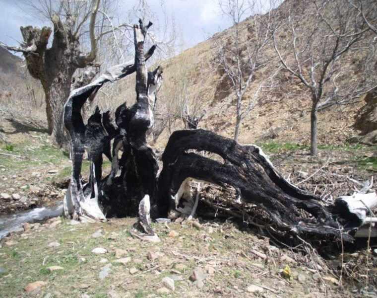 روستای دیزباد نیشابور، زیباترین روستای پلکانی ایران بعد از ماسوله