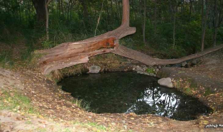 پارك جنگلی چهلمیر