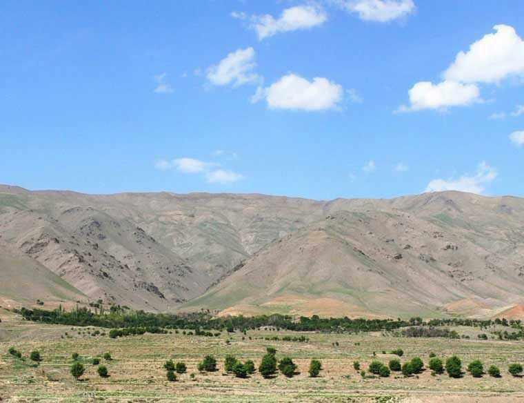 منطقه شکار ممنوع کمرسرخ، معدن داروهای گیاهی