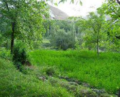 روستای ییلاقی ایده لیک