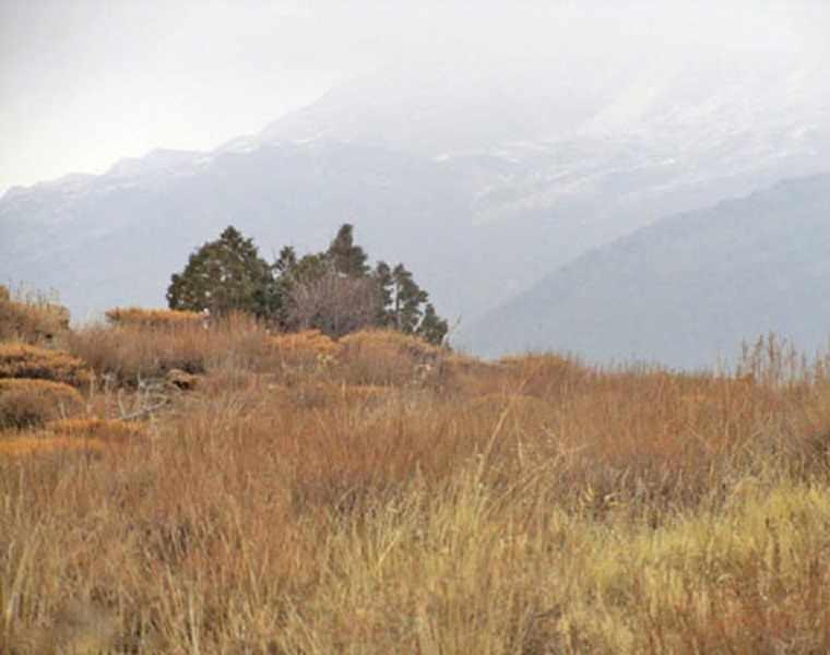 پارک ملی سالوک