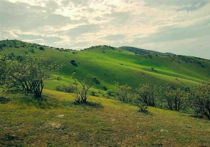 روستای چهچهه مشهد