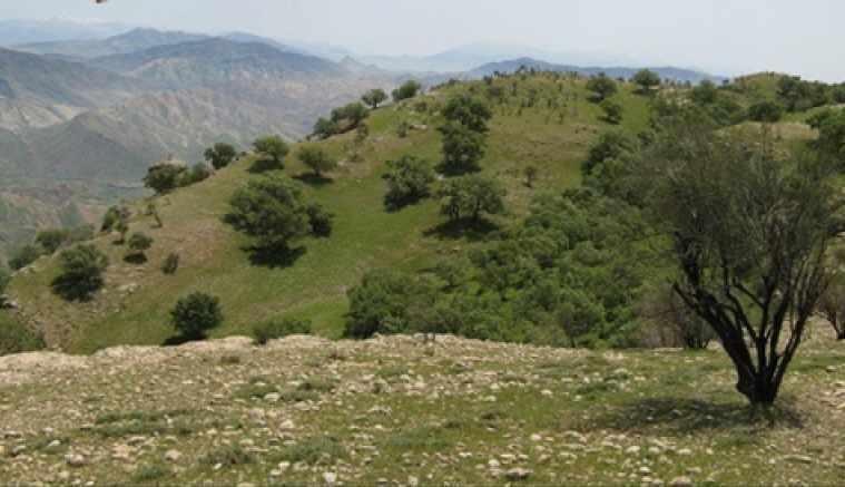 منطقه شکار ممنوع شو و لندر