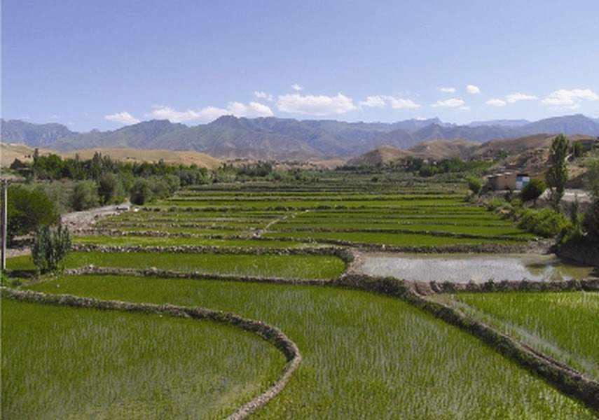 روستای لایین کلات