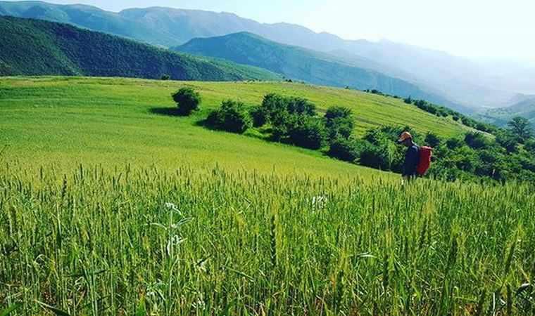 منطقه نمونه گردشگري کشانک