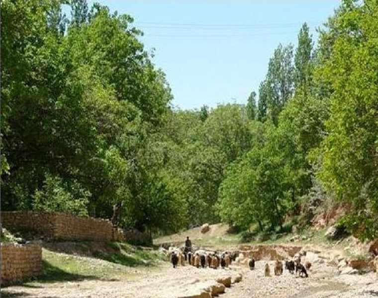 روستای استاد