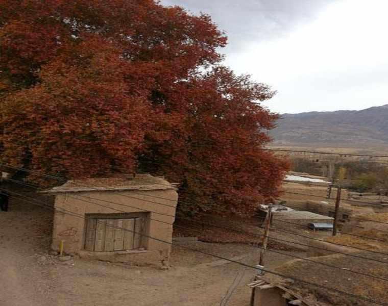روستای طبر