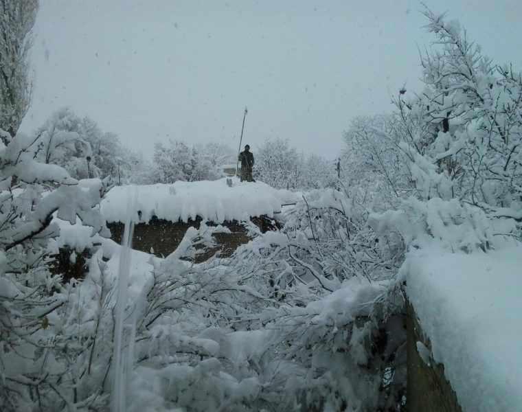 روستای ننیز علیا