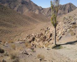 منطقه حفاظت شده کوه آسیاب