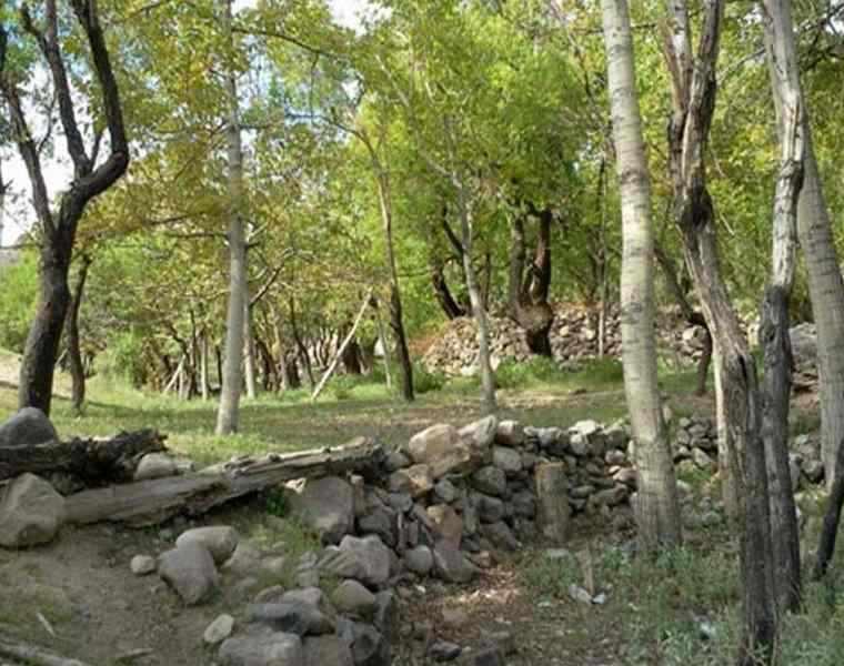 روستای مسینان شهر بابک