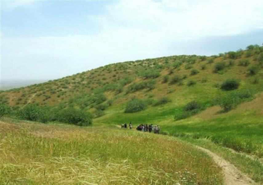 منطقه حفاظت شده جنگل خواجه