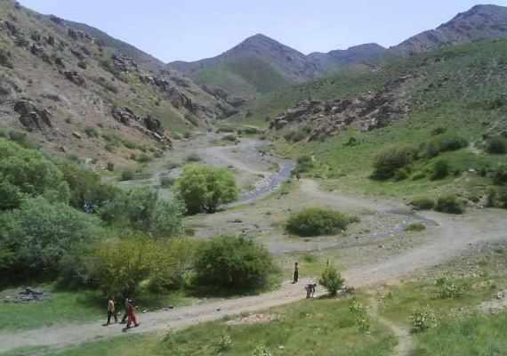 چشمه زرد کردیان (روستای کردیان)
