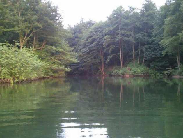 سنبل رود
