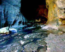 غار شیر آباد، زیستگاه سمندر غارزی گرگانی