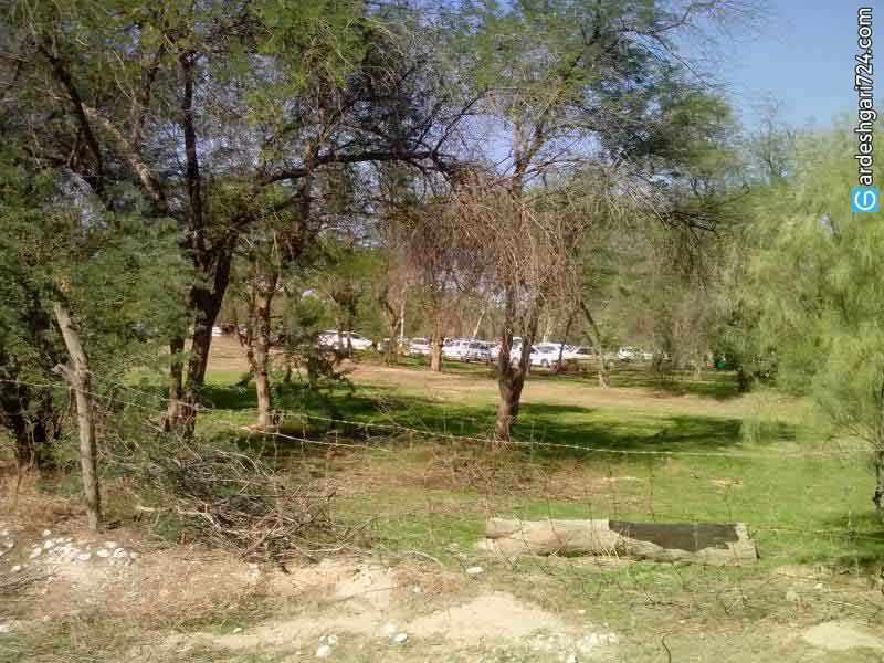 پارک جنگلی چاهکوتاه