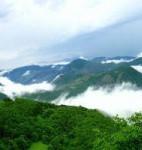 جنگل ارسباران، از زیباترین جنگل های ایران