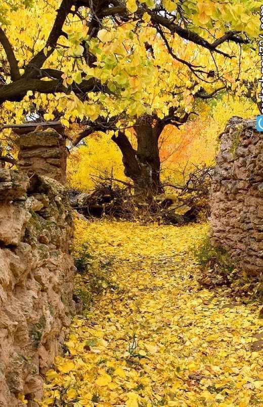 آبشار کالاش، باغ امینی