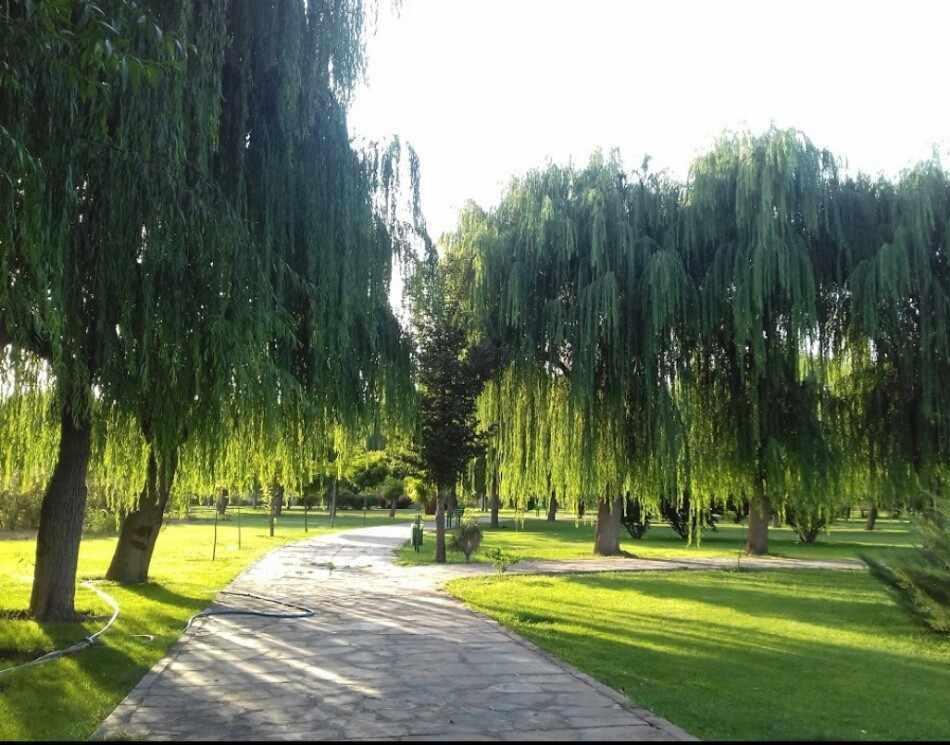 پارک جنگلی توسکا تهران