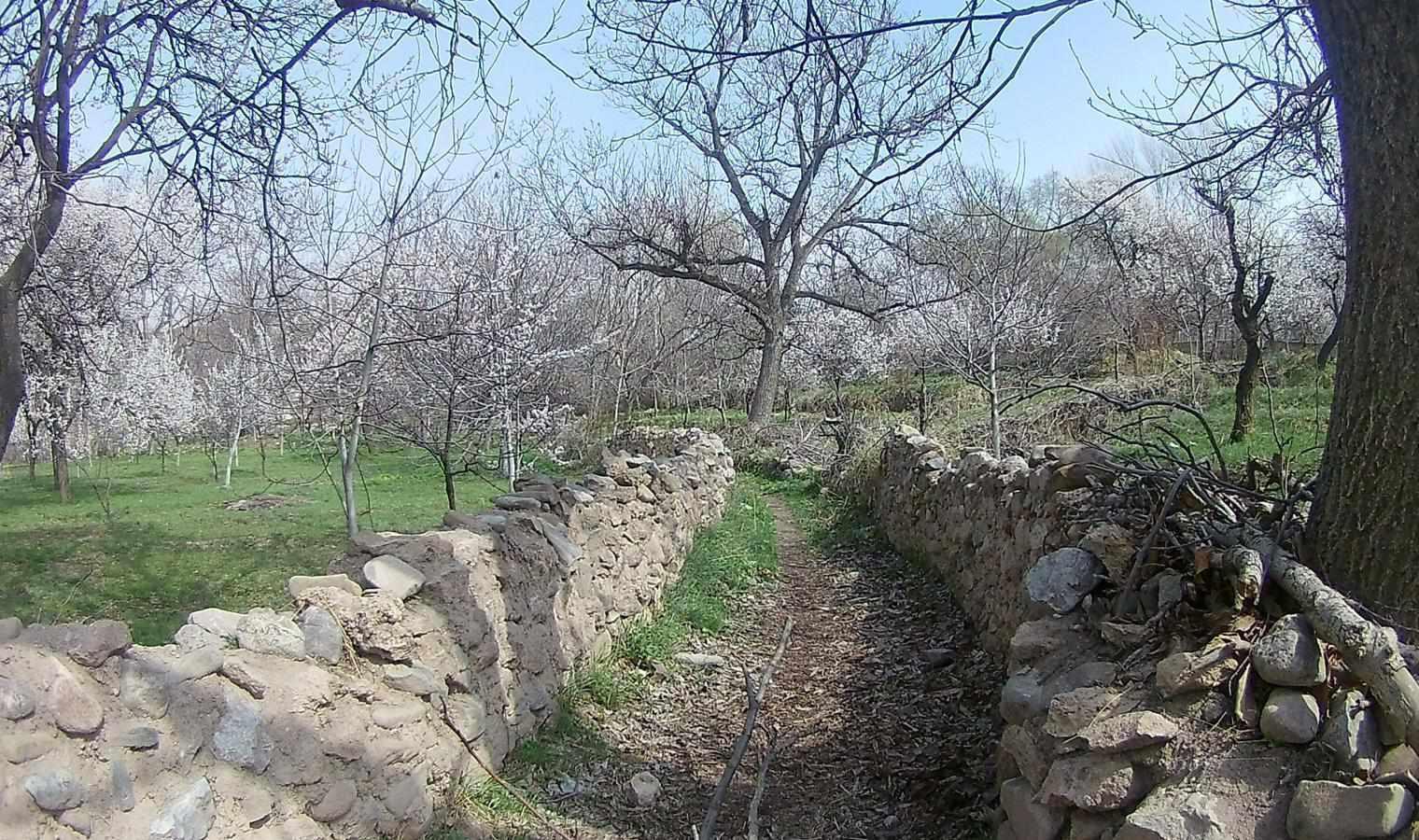 تفرجگاه ماهار زنوز، بهشتی خمارآلود