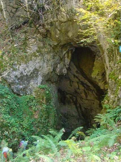 غار آویشوی، غار رودخانه ای