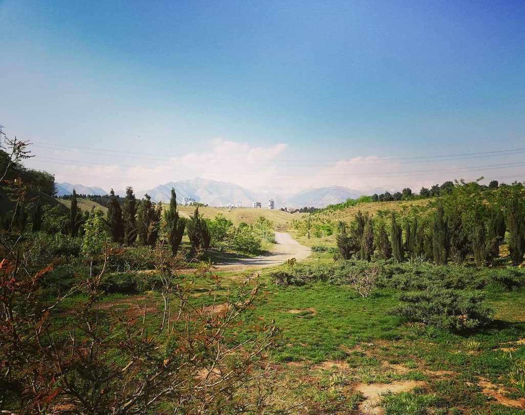 پارک جنگلی پردیسان، پارکی با طبیعتی جذاب