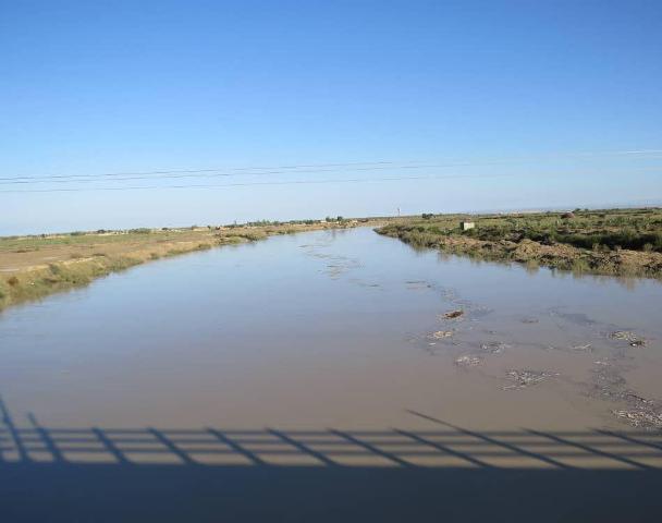 تالاب یا منطقه حفاظت شده حله