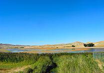 تالاب قوری گل، زیباترین تالاب های استان آذربایجان شرقی