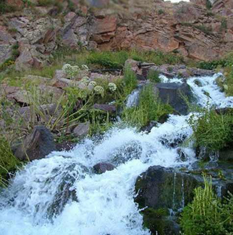 چشمه خارگان شیراز