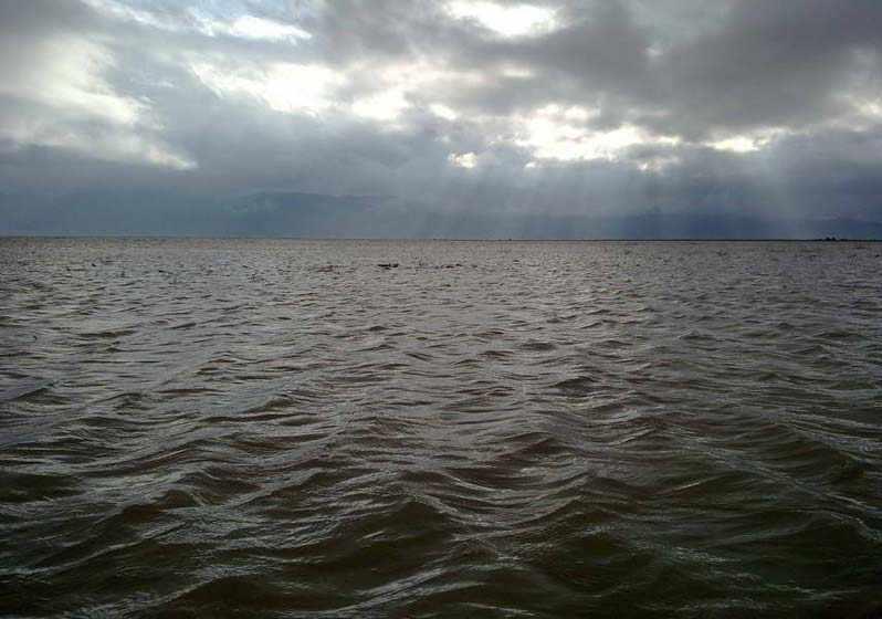 دریاچه کفه خنج، دریاچه ای در همسایگی نخل ها