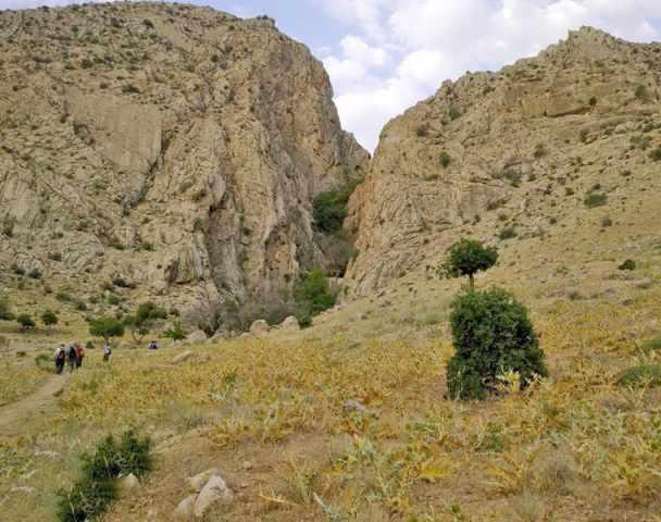 گردشگاه چشمه سلمانی