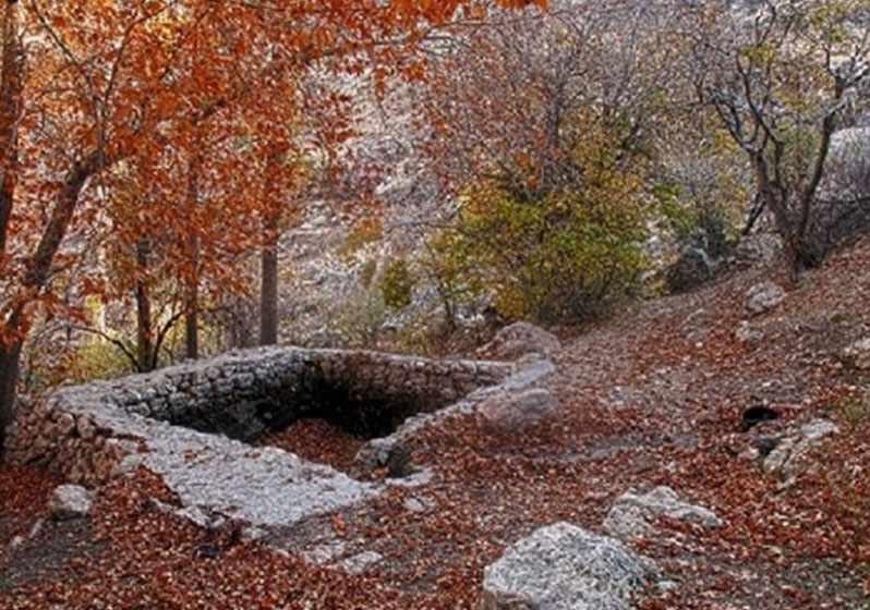 پارک جنگلی استهبان