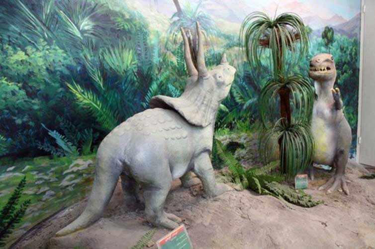 موزه تاریخ طبیعی قم