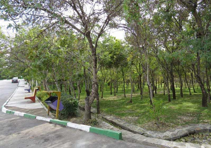 پارک جنگلی ارومیه (شیخ تپه)