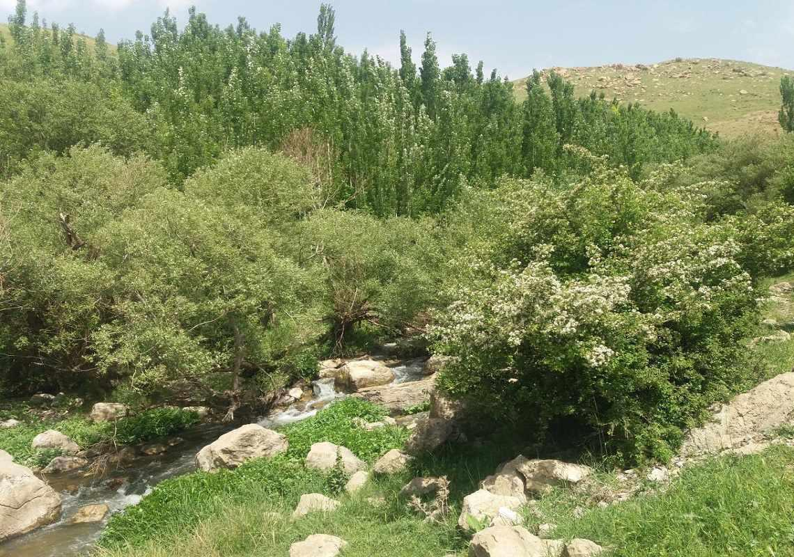 رودخانه ماربره