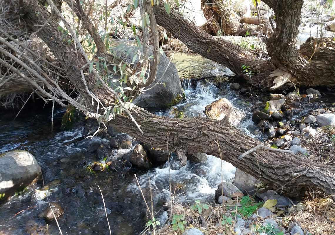 رودخانه کهمان