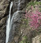 آبشار سولیک