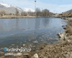 دریاچه ی شلمزار شهرکرد