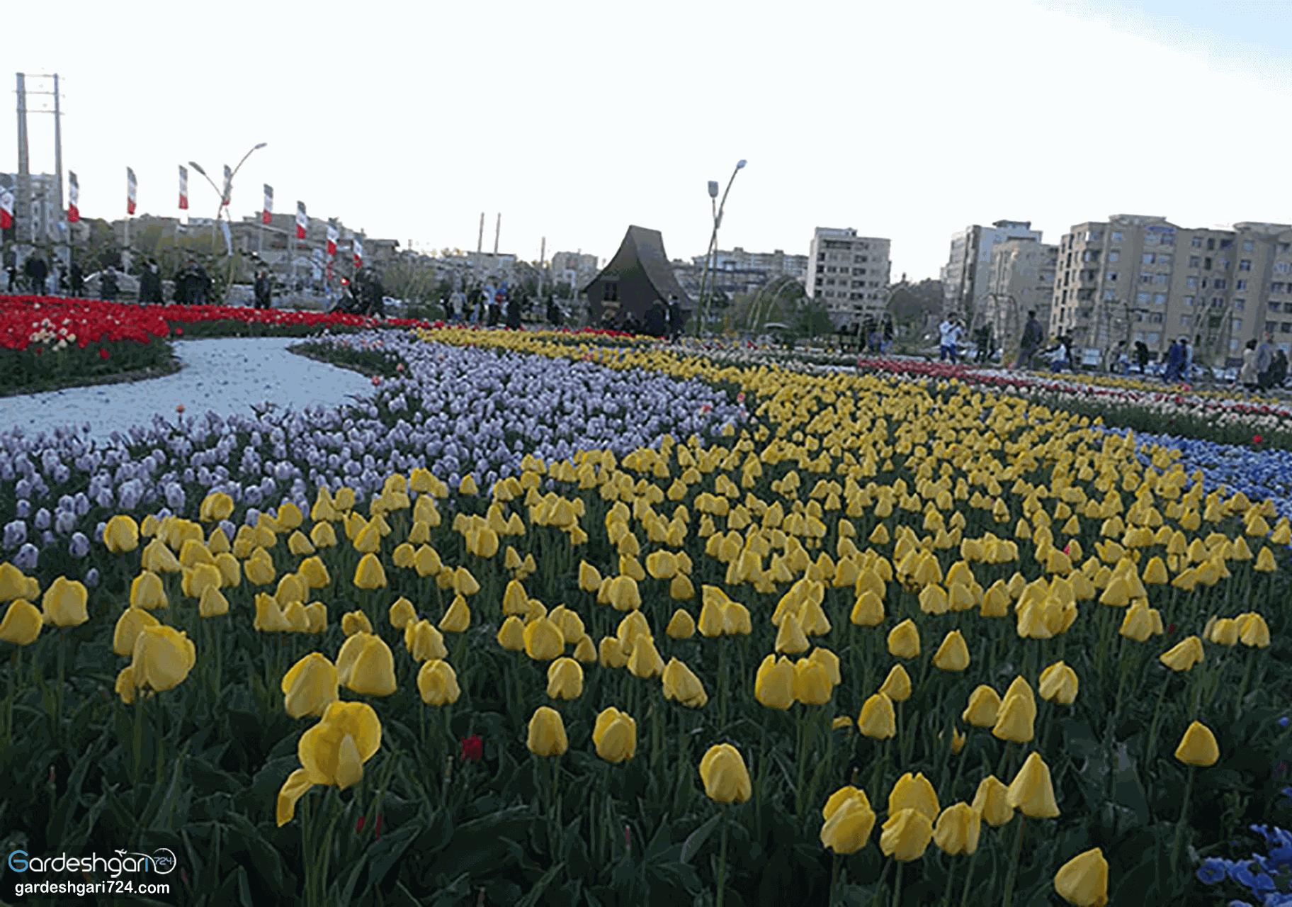 پارک گوللر باغی ارومیه ، پارک دانشجو