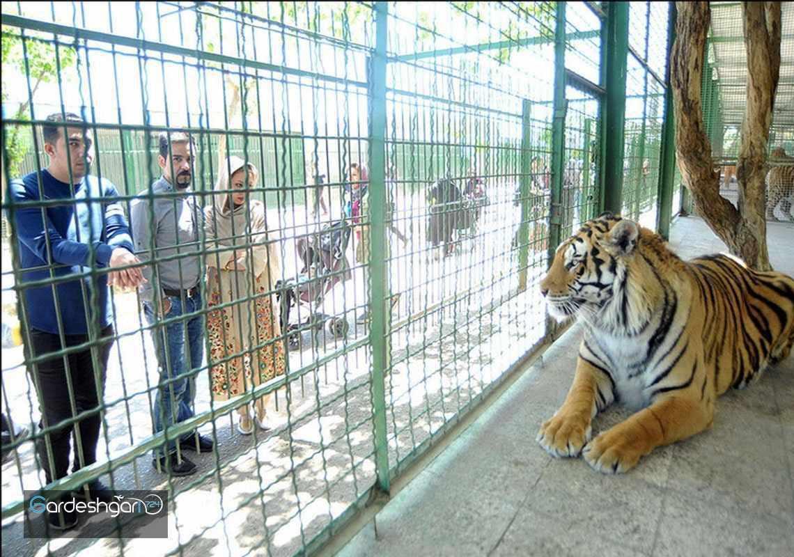 باغ وحش وکیل آباد