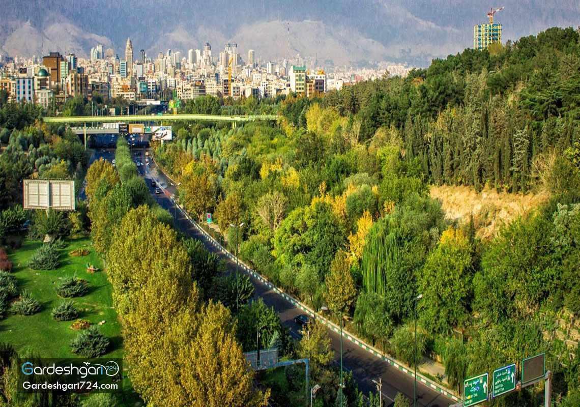 پارک جنگلی طالقانی، تماشای تهران از روی پل طبیعت
