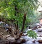 آبشار روستای بار نیشابور