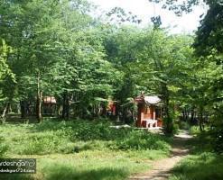 پارک جنگلی قرق، باغ وحش طبیعی ایران