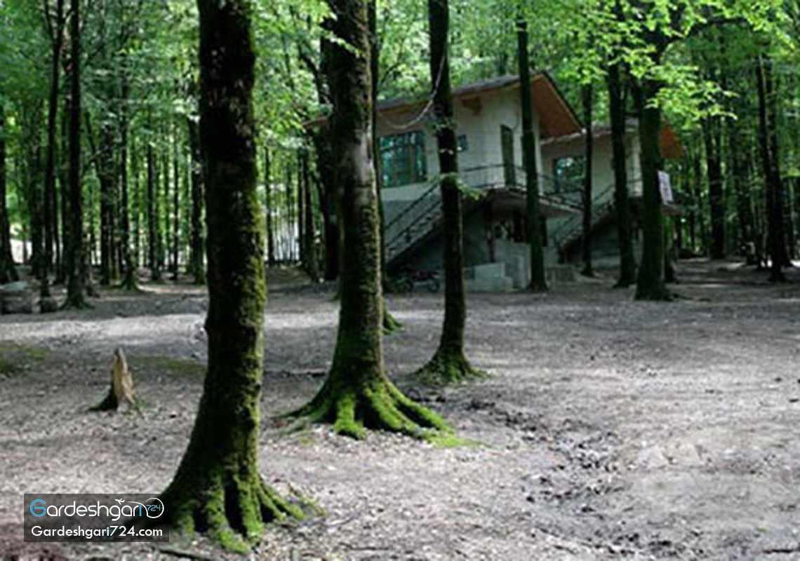 پارک جنگلی کردکوی، منطقه جنگلی پلنگ پا با آبشاری خزه ای