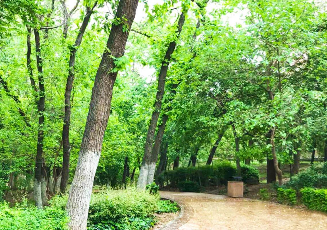 بهترین و معروف ترین پارک های تهران